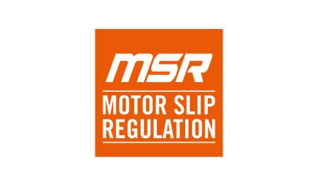 MOTOR SLIP REGULATION